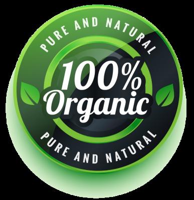 Organic SEO Ranking